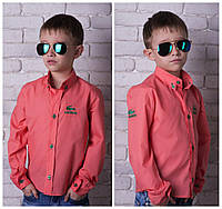 Модная рубашка Lacoste для мальчика,шикарная вышыивка прочной нитью