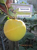 Яблуко Гринсливз