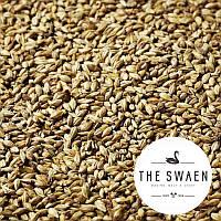 Солод пшеничный White Swaen Classic (NL), EBC 3-5