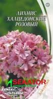 Семена цветов Лихнис «Халцедонский розовый» 0,3 г  Семена Украины