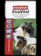 Корм Beaphar Xtra Vital Guinea Pig Junior Food для молодых морских свинок, 500 г