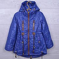 Куртка детская демисезонная Кузя #А-8 для девочек. 110-134 см. Синяя. Оптом., фото 1