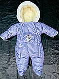 Зимний комбинезон для новорожденных (0-6 месяцев) фиолетовый в горошек, фото 2
