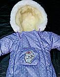 Зимний комбинезон для новорожденных (0-6 месяцев) фиолетовый в горошек, фото 3