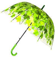 Зонт Для подростка трость полуавтомат Кленовые листья 18-3122-2