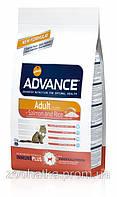 Advance (Эдванс) Cat Adult Salmon & Rice (15 кг) корм для взрослых котов с лососем и рисом
