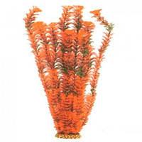 Aquatic Plants (Акватик Плэнтс) Аквариумное растение, 55 см х 4 шт/уп.
