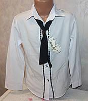 Оптовая продажа детской одежды.Блузка школьная Турция  7-8,8-9,9-10,10-11 лет