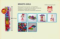 Конструктор Brikets girl 385 елементів