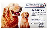 Празител плюс для собак и щенков средних и крупных пород, 6 табл.