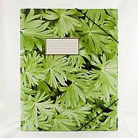 Папка на резинке А4 Зелень, ТП004П39ГБР