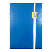 Папка А4 На подпись Economix синяя, Е30901-02