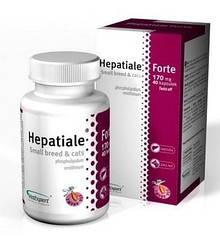 VetExpert Hepatiale Forte Small breed & cats 170 mg Гепатиале Форте смол дог/кет 40 капс