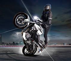 Мотоцикл  Kawasaki-Bajaj PULSAR NS200 Индия.