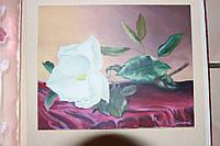 """Картина """"Магнолия"""", холст, масло (40х65)"""