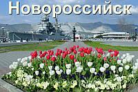 Такси Донецк-Новороссийск-Донецк , фото 1