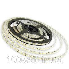 Лента светодиодная MTK-300W3528-12(7000K~8000K)LED60 2835 4.8w IP20 холодная белая на белой основе