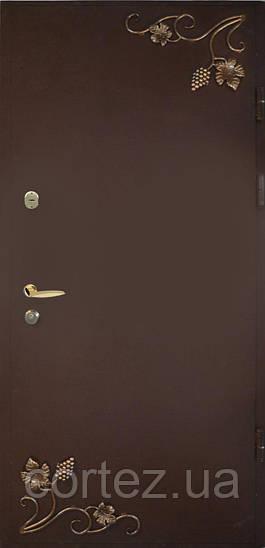 Двери входные металлические М6