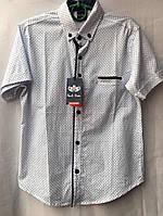 Рубашка для мальчика с коротким рукавом 16-11 лет