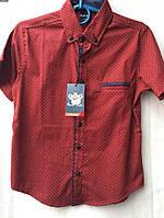 Рубашка для мальчика с коротким рукавом 6-11 лет