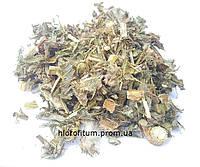 Артишок посевной, трава 100 грамм