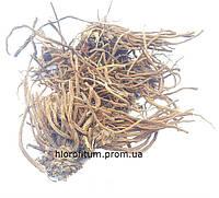 Валериана лекарственная корень и корневища 50 грамм