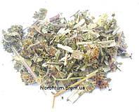 Пустырник 100 грамм - трава пустырника пятилопастного