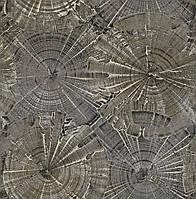 Carl Robinson (Edition 15: Sea Glass OPAL CR76003)
