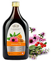 Мультивитаминный напиток Иммун Фит, Вивасан, 500 мл, иммуномодулятор, укрепление иммунитета