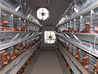 Вентиляционная система для птицефабрик