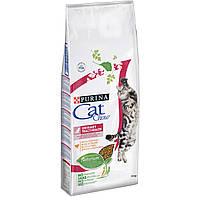 Cat Chow Special Care Urinary Tract Health 15кг- корм для профилактики мочекаменной болезни у кошек