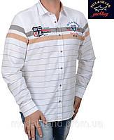 Стильные мужские рубашки опт и розница,Paul Shark-1351 бежевая