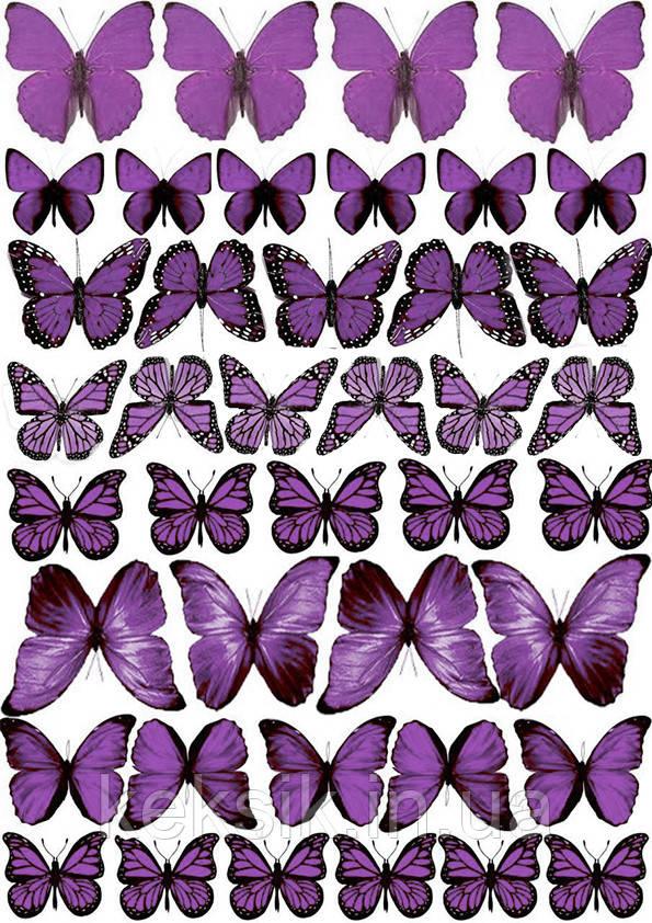 Вафельная картинка Бабочки 8