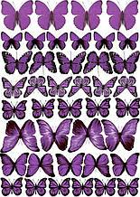 Вафельна картинка Метелики 8
