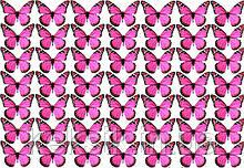 Вафельная картинка Бабочки 7