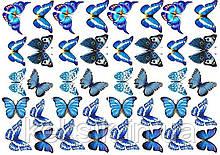 Вафельна картинка Метелики 9
