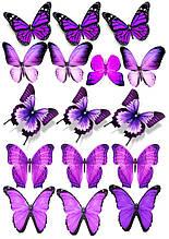 Вафельна картинка Метелики 10