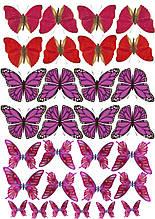 Вафельные картинки Бабочки 13