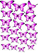 Вафельные картинки Бабочки 12