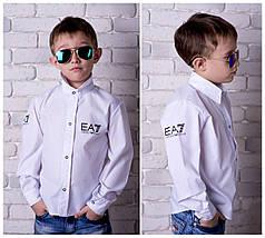 Стильная рубашка Armani. Шикарный, стильный вариант школы. Высокое качество пошива.
