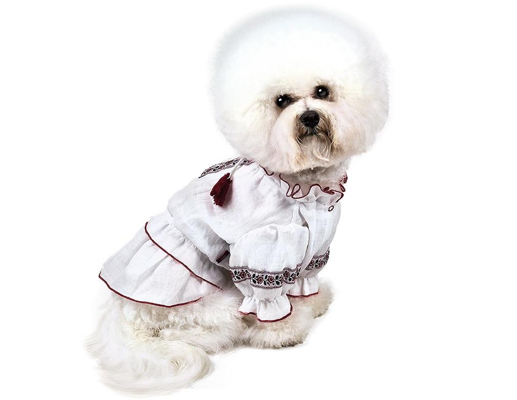 Pet Fashion Вышиванка Марийка XXS