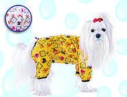 Pet Fashion Дождевик Бердс М, фото 3
