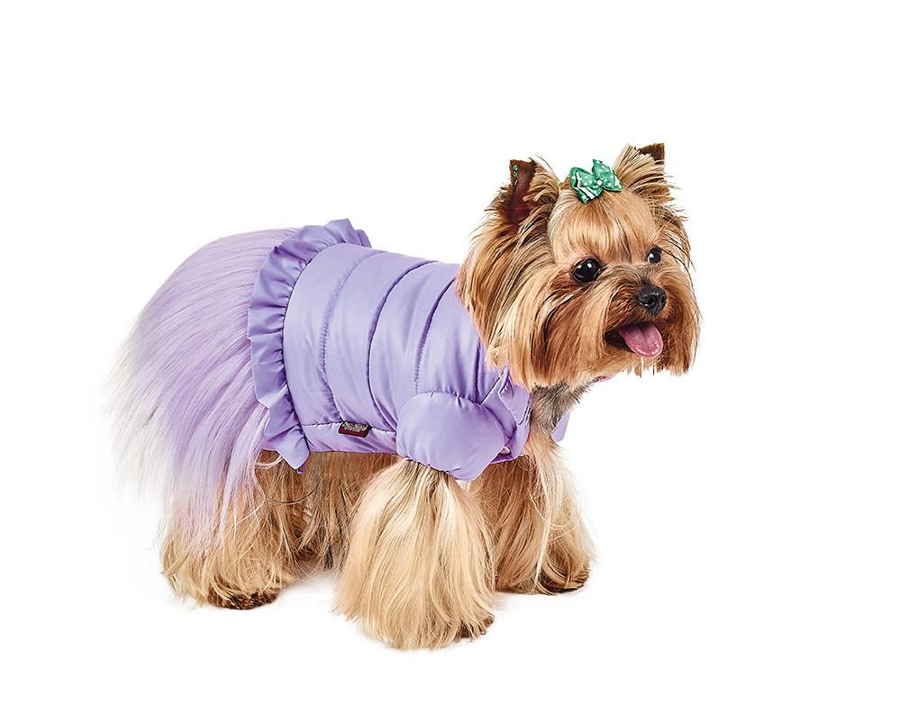 Pet Fashion Жакет Франческа XS