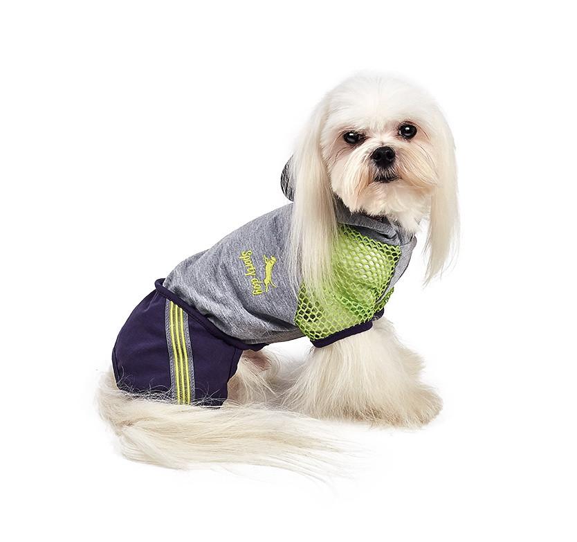 Pet Fashion Комбинезон Трек XS2