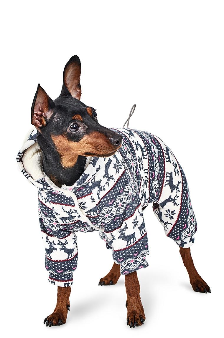 Pet Fashion Комбинезон Пегас S
