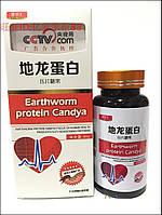 Капсулы Earthworm Protein протеин активный полипептид протеиновый из экстракта дождевого червя 60шт