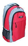 Ранец-рюкзак Safari 2 отделения сине-серый 97009