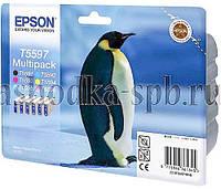 Набор картриджей оригинальных (6 шт) Epson Т5597 (C13T55974010), для Epson Stylus Photo RX700 (0156.1)
