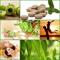 Аюрведические препараты, аюрведичесекая продукция для здоровья и активного долголетия