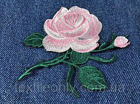 Нашивка Роза 2 бутона розовая 115x92 мм
